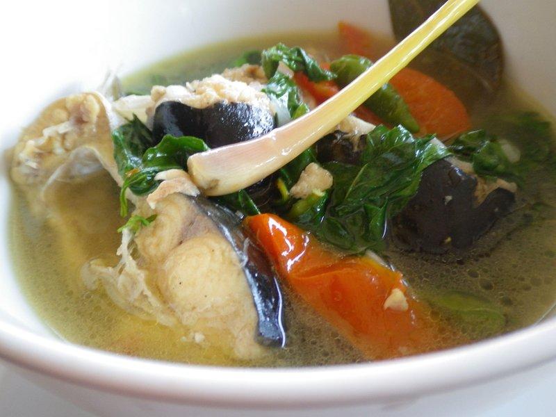 nutrisi dalam ikan patin