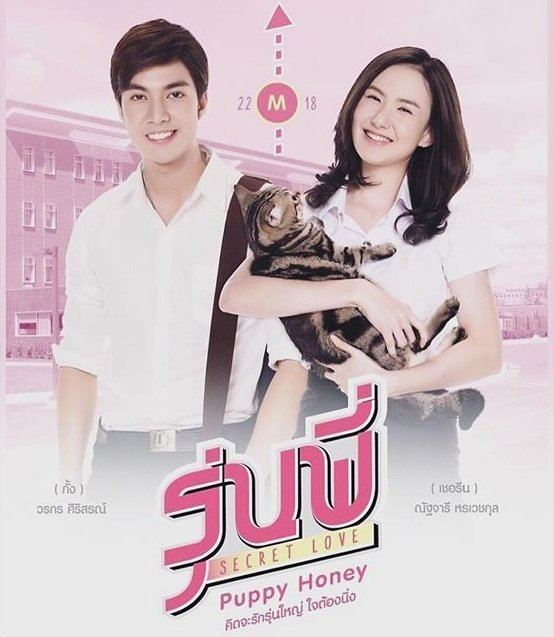 Drama Thailand Romantis Secret Love