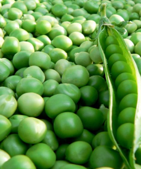 15 Makanan Paling Bergizi di Dunia Menurut Para Ahli 15.png