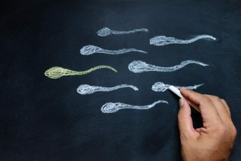 demam terhadap penurunan kualitas sperma