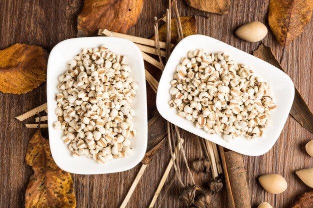 barley dan fungsi untuk tubuh