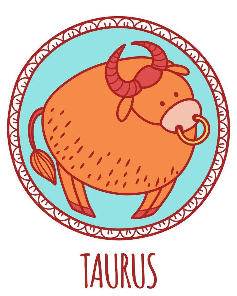 2 taurus new