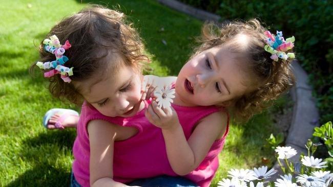 259627 arizona conjoined twins