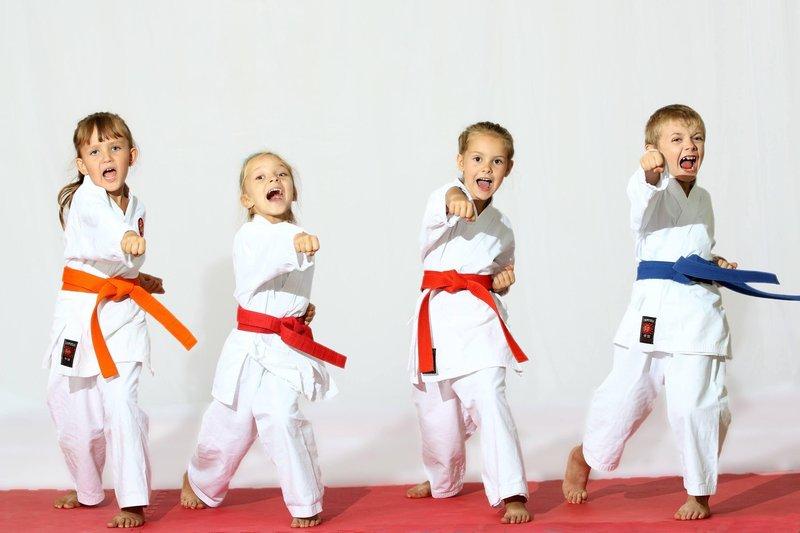 3 karate