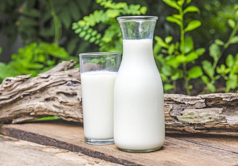Susu Ibu Menyusui yang Bagus untuk Bayi -3