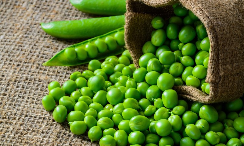 mpasi sayuran hijau untuk anak