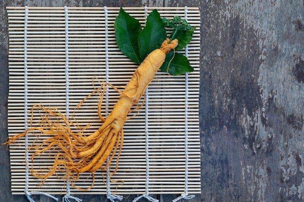 mengolah daun ginseng