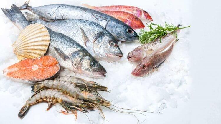 4 Fakta Tentang Makan Ikan selama Kehamilan, Tengok di Sini! 03.jpg
