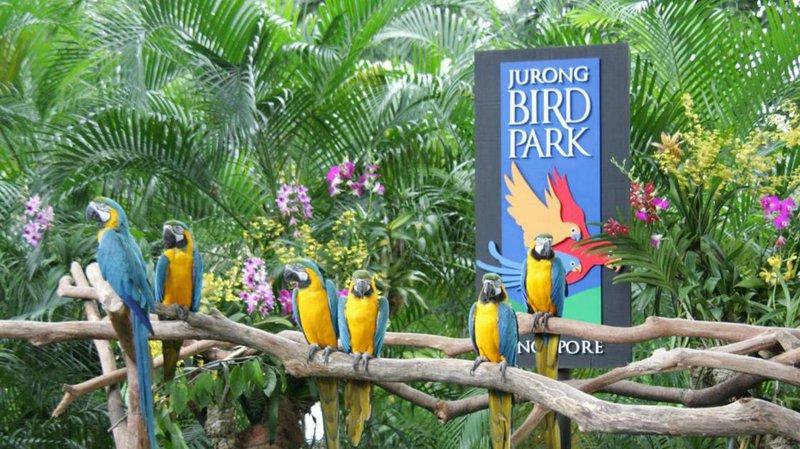 5 jurong bird park(1510x849)