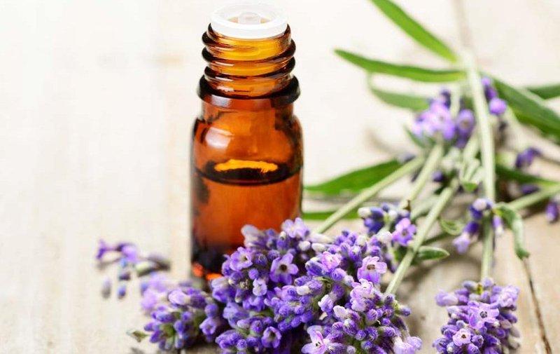 5 lavender oil