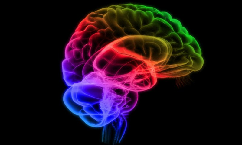 5 Efek Skizofrenia pada Kehamilan 04.jpg