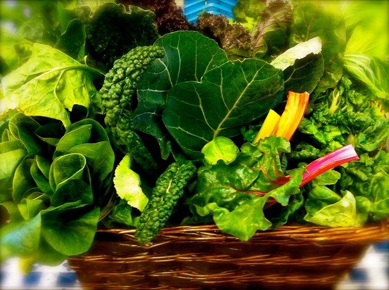 5 Makanan yang Bagus Untuk Mendukung Perkembangan Otak Bayi 1.jpeg
