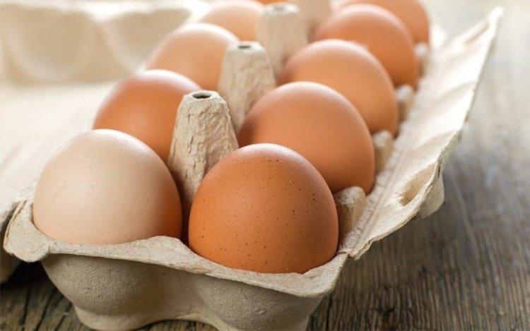 telur, makanan sehat untuk ibu hamil