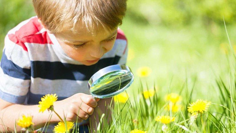5 alasan untuk mulai mengajak anak beraktivitas di alam bebas 2
