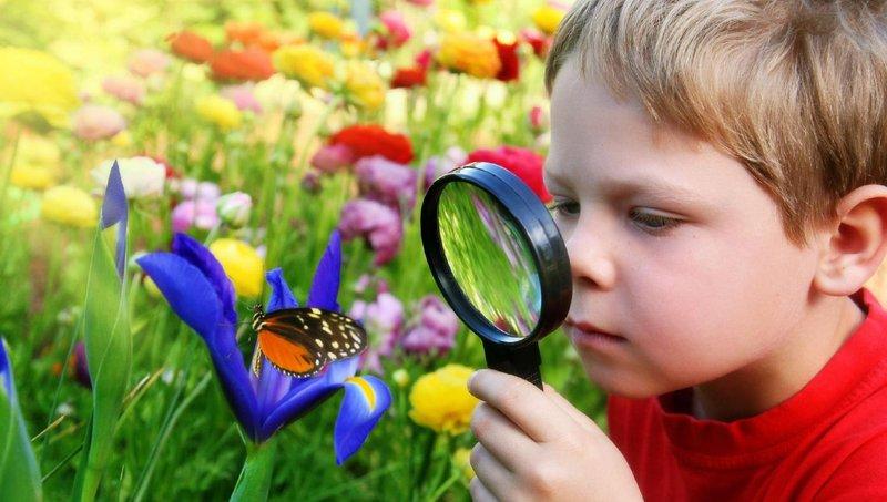 5 cara membantu anak kinestetik belajar di rumah 5