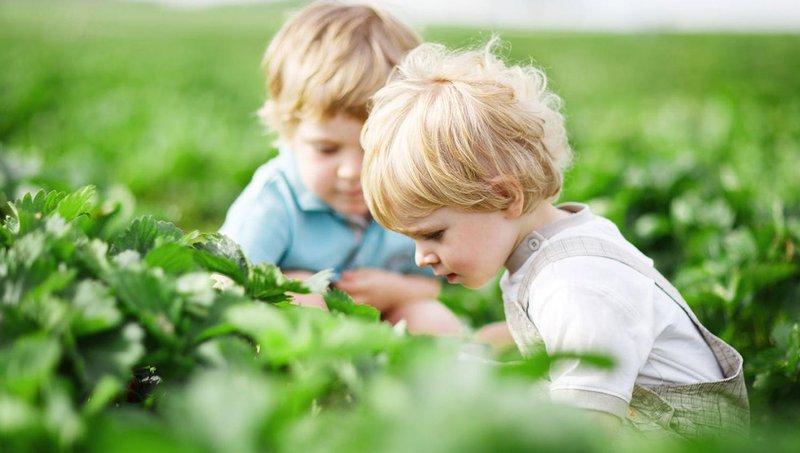 5 cara mengajarkan anak agar mencintai lingkungannya 3