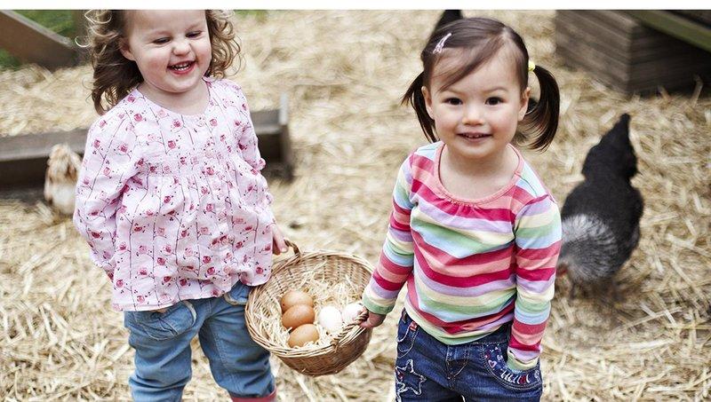 5 cara mengajarkan anak agar mencintai lingkungannya 2