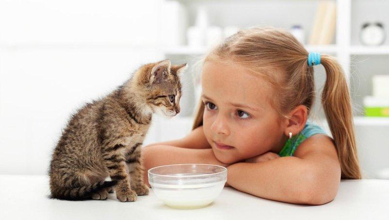 5 kiat ajarkan anak mengurus binatang peliharaan dengan baik 2