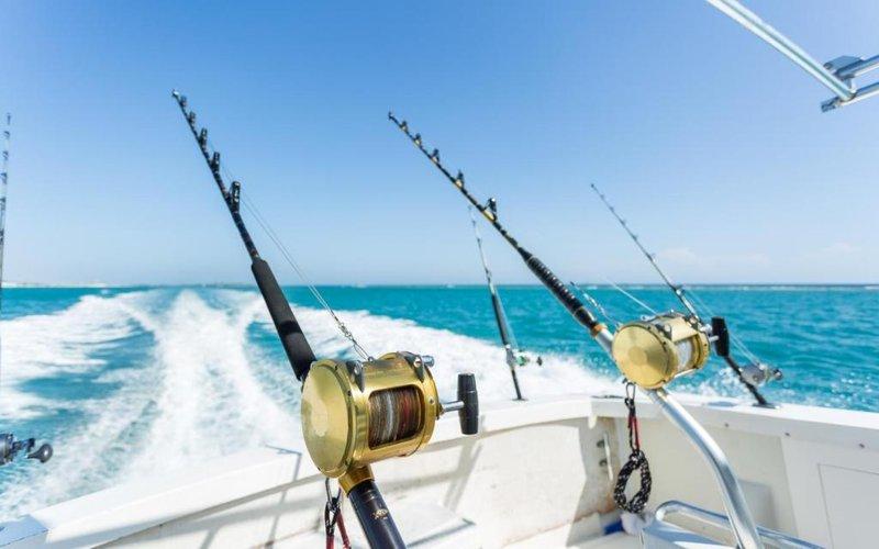 8 Arti Mimpi Memancing Ikan -8.jpg