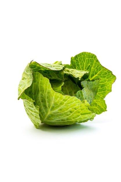 daun kubis dapat menurunkan kadar kolesterol