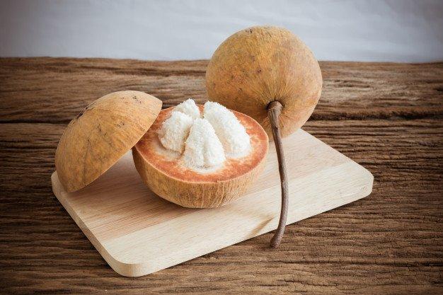buah kecapi untuk kesehatan tulang