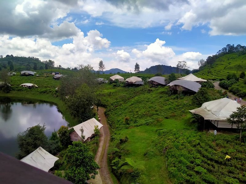 wisata ciwidey perkebunan teh ranca bali