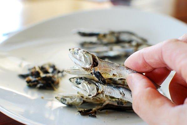 manfaat ikan teri