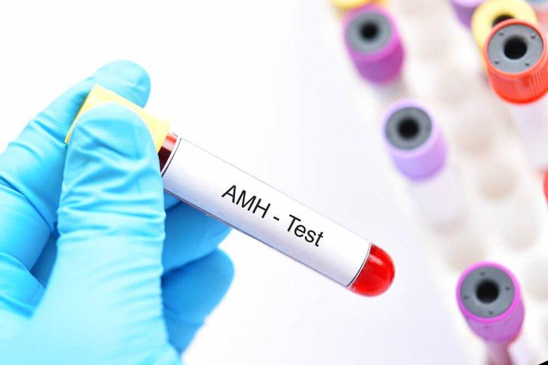 Apakah Level AMH Pengaruhi Peluang Hamil? 1