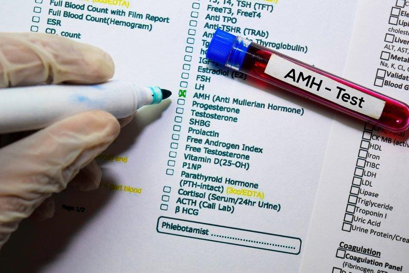 Apakah Level AMH Pengaruhi Peluang Hamil? 2