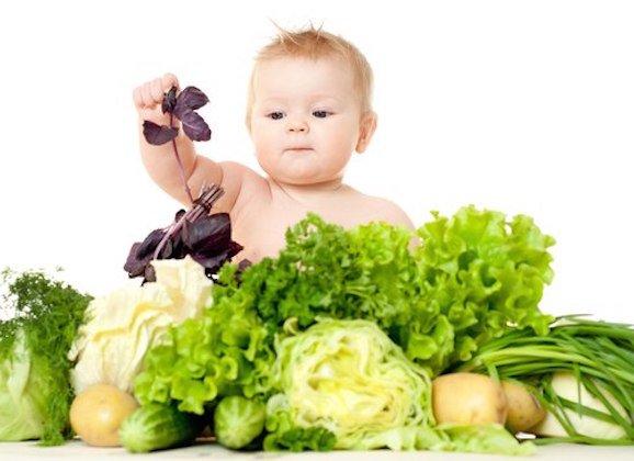 Apakah Mengajak Bayi Menjadi Vegan Berisiko -1.jpg