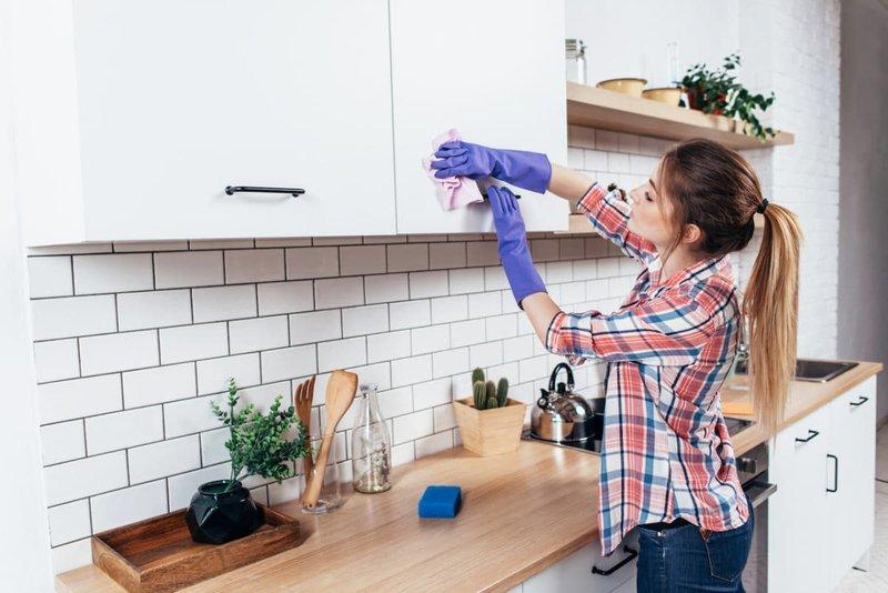 Bagaimana Jika Cara Mengusir Semut Secara Alami Tidak Berhasil