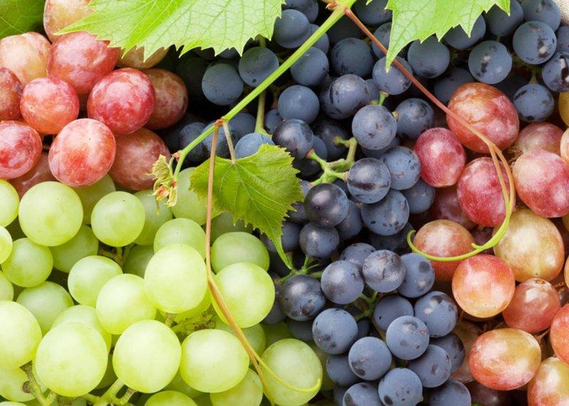 Bahaya Buah Anggur untuk Ibu Hamil.jpg