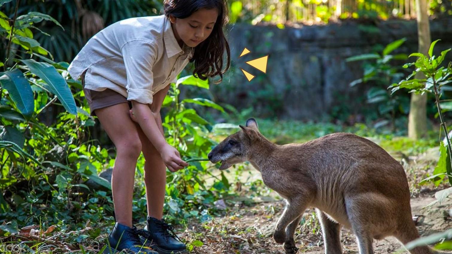 6 Tempat Wisata Edukasi Di Bali Pas Banget Untuk Si Kecil