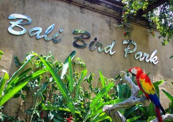 Bali Bird Park.jpg