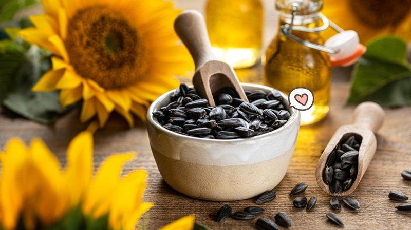 Cara Menanam Bunga Matahari, Camilan Sehat Saat Program Hamil.jpg