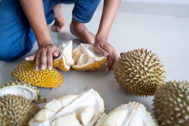 Bolehkah Ibu Menyusui Makan Durian-2.jpg