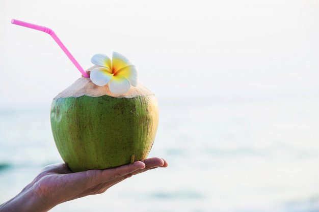 kelapa muda untuk ibu hamil