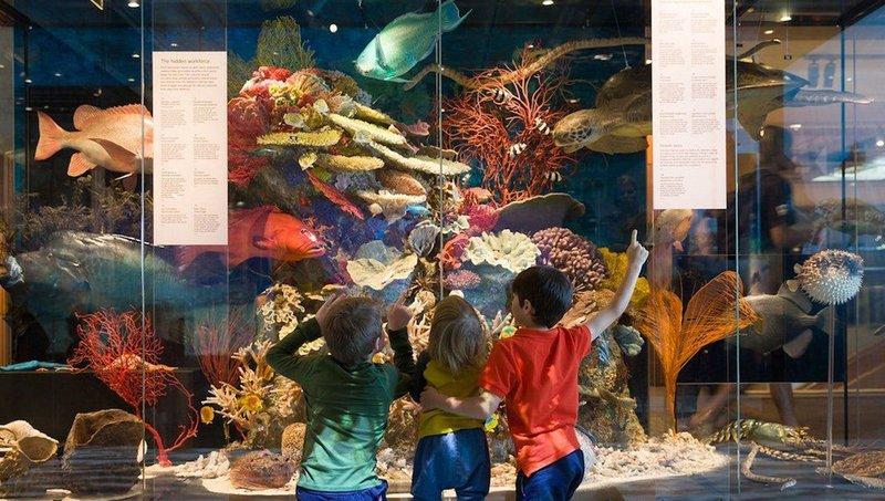 Bukan Cuma Edukatif, Ini 3 Manfaat Penting Mengajak Anak Ke Museum 1.jpeg