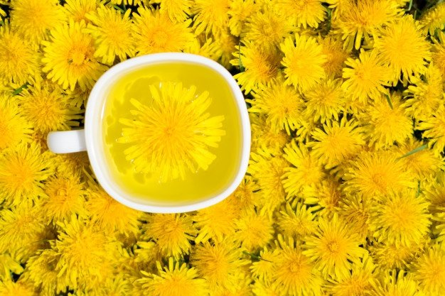 Bunga Dandelion dan Manfaatnya.jpg