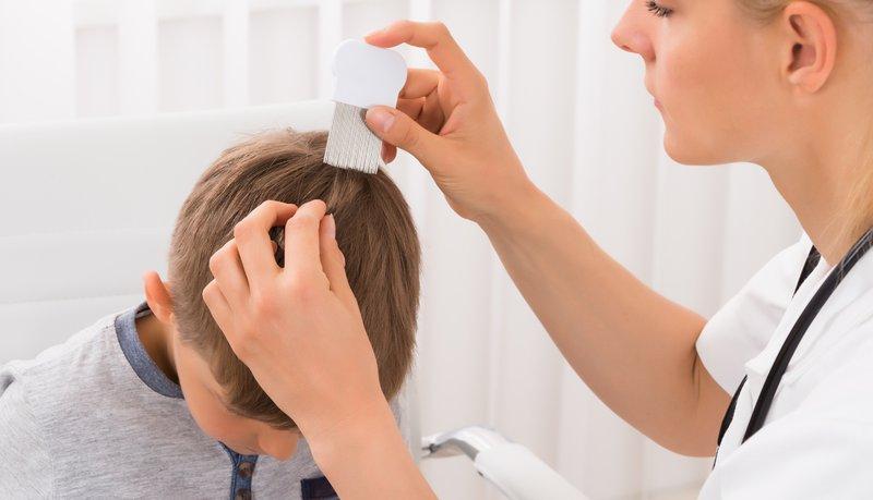 Cara Mengetahui Apakah Si Kecil Kutuan kutu rambut menular.jpg