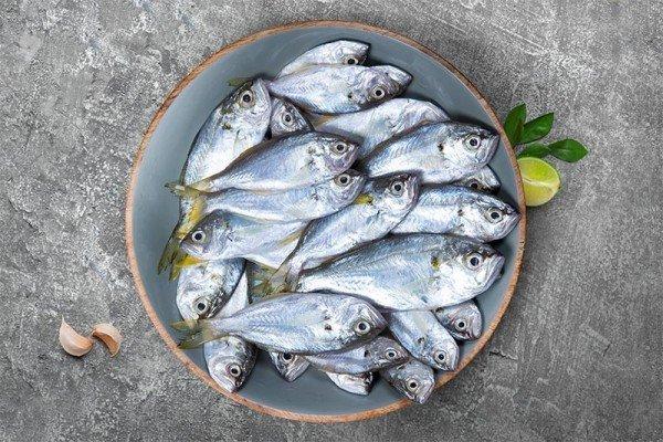 Ciri Ikan Segar.jpg