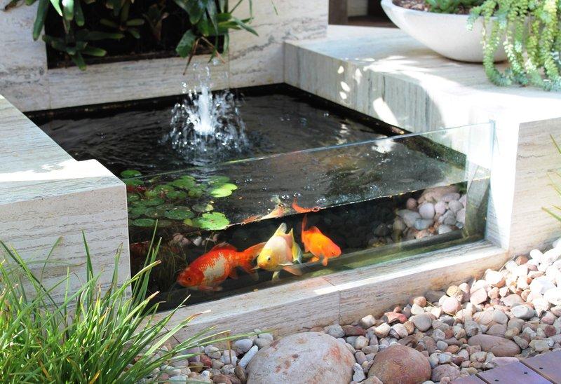 Desain Kolam Koi yang Simpel