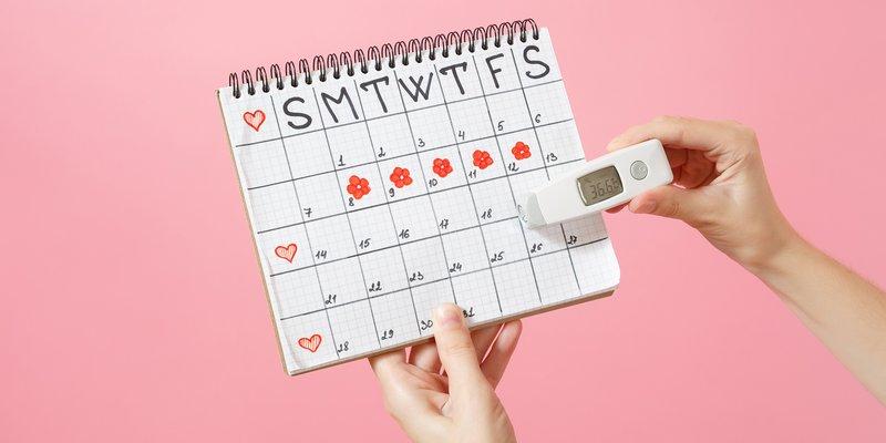 Catat jadwal menstruasi.webp