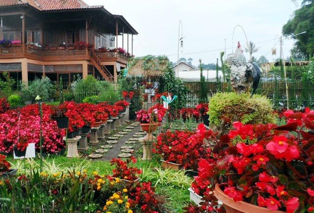 Taman wisata begonia.jpeg