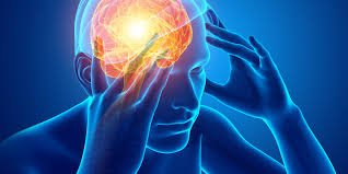 Fungsi Hormon Kortisol.jpg