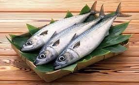 Ikan Segar dan Ciri-cirinya.jpg