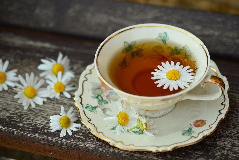 bolehkah ibu hamil minum teh herbal