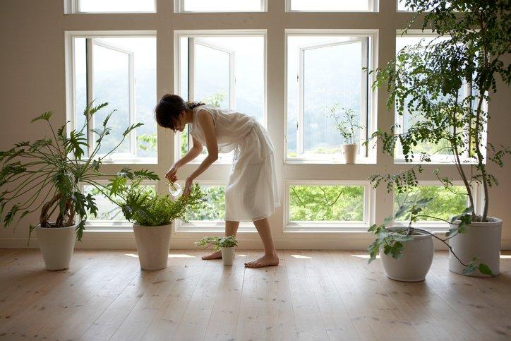 Intip 5 Cara Mudah Menghindari Zat Kimia Beracun Di Rumah -1.jpg