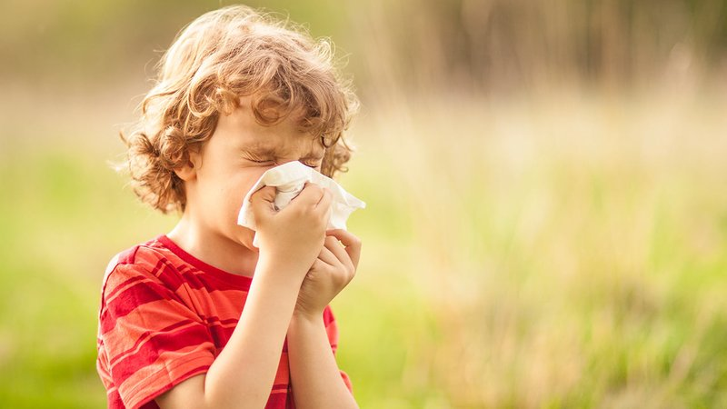 rhinitis alergi pada anak
