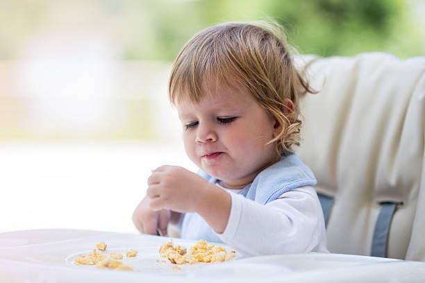 alergi telur pada bayi